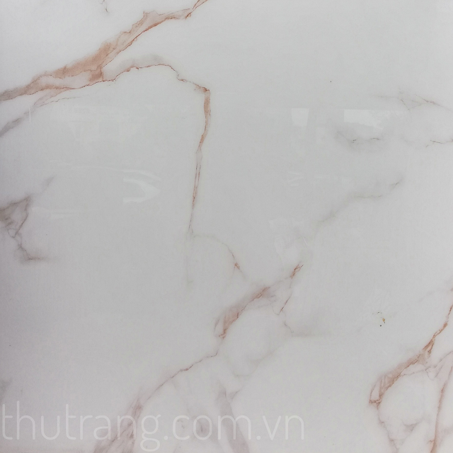 Gạch xương Ganite phủ kính của Trung Quốc